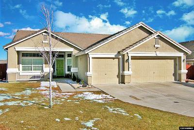 Washoe County Single Family Home New: 17970 Blake Court