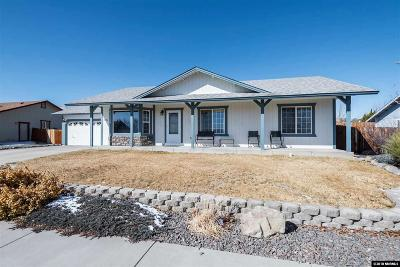 Washoe County Single Family Home New: 1096 Gadwall Way