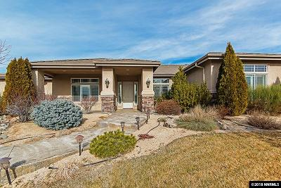 Washoe County Single Family Home New: 305 Mystic Mountain Drive