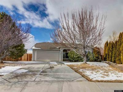 Washoe County Single Family Home New: 7841 Zafiro