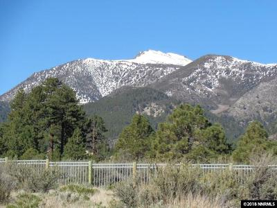 Reno Residential Lots & Land New: 16945 Salut Court