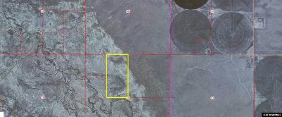 Battle Mountain NV Residential Lots & Land For Sale: $39,900