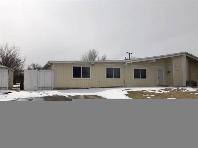 Reno Single Family Home For Sale: 5380 Ural St