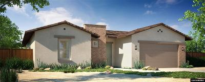 Fernley Single Family Home For Sale