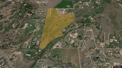 Reno Residential Lots & Land For Sale: 11095 Thomas Creek Rd