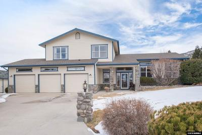 Reno Single Family Home For Sale: 14000 Rim Rock Dr