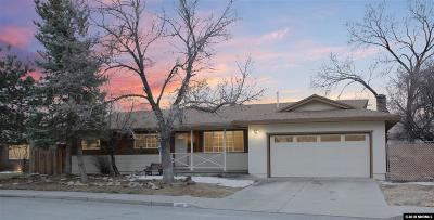 Carson City Single Family Home For Sale: 1805 Camille