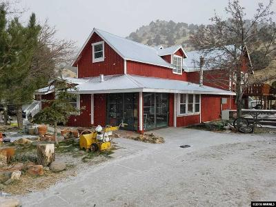 Virginia City Multi Family Home For Sale: 688 N Seven Mile Canyon Rd
