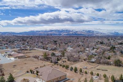 Washoe County Single Family Home For Sale: 3434 Martini Road