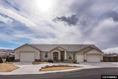 Washoe County Single Family Home For Sale: 2595 Las Plumas