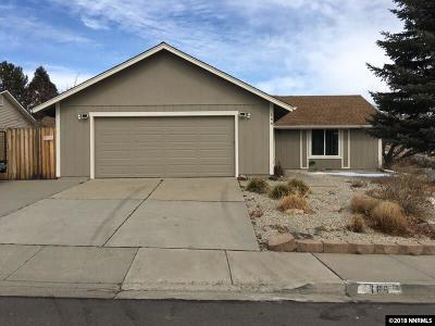 Carson City NV Single Family Home New: $325,000