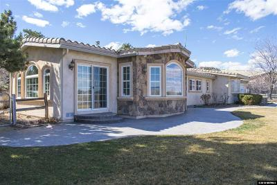 Washoe County Single Family Home For Sale: 3605 Frost Lane