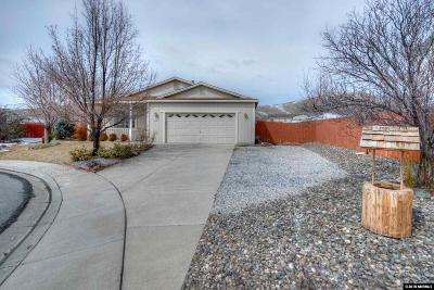 Reno NV Single Family Home New: $295,000