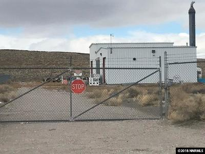 Fallon NV Commercial For Sale: $159,900
