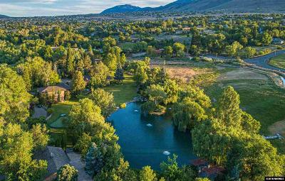 Washoe County Single Family Home For Sale: 2750 Holcomb Ranch Lane
