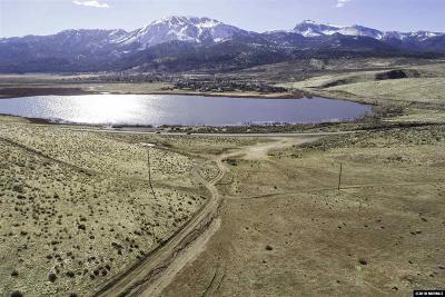 Washoe Valley Residential Lots & Land For Sale: 04 Eastlake Blvd