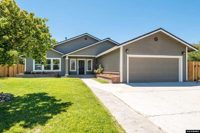 Gardnerville Single Family Home For Sale: 1406 Patricia Dr.