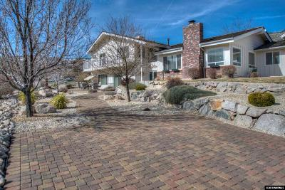 Carson City Single Family Home For Sale: 18 Canyon Drive
