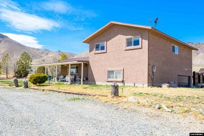 Yerington Single Family Home For Sale: 595 Hwy 339
