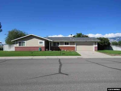 Gardnerville Single Family Home For Sale: 1490 Hussman Ave