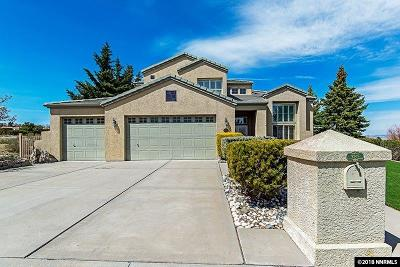 Reno Single Family Home For Sale: 2585 Manzanita Ln