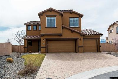 Reno Single Family Home For Sale: 2750 Drum Horse