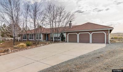 Reno, Sparks, Carson City, Gardnerville Single Family Home For Sale: 320 Rebecca Dr
