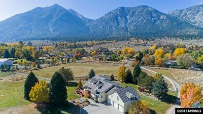 Gardnerville Single Family Home For Sale: 913 Sheridan Lane