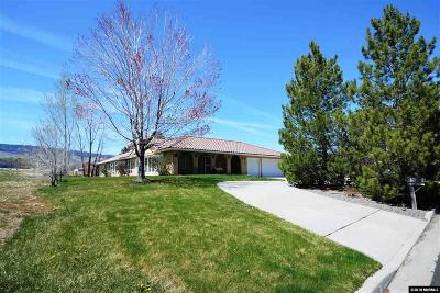 Washoe County Single Family Home For Sale: 13725 Edmands Dr