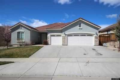 Washoe County Single Family Home For Sale: 1645 Ashland Bluff Way