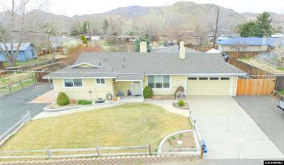Carson City Single Family Home For Sale: 4480 E. Nye Lane