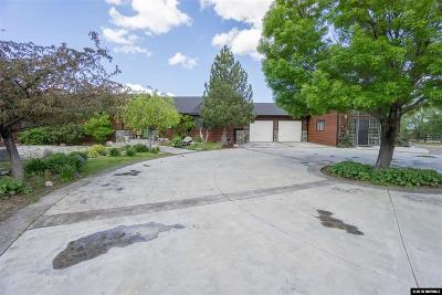 Gardnerville Single Family Home Active/Pending-Call: 658 Stones Throw Road