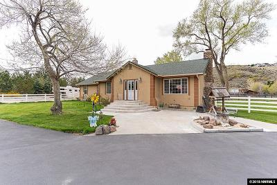 Washoe County Single Family Home For Sale: 2250 Holcomb Ranch Lane