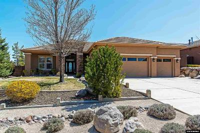 Washoe County Single Family Home New: 2750 Shadow Dancer Trail