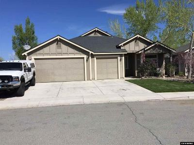 Fernley Single Family Home New: 960 Agate