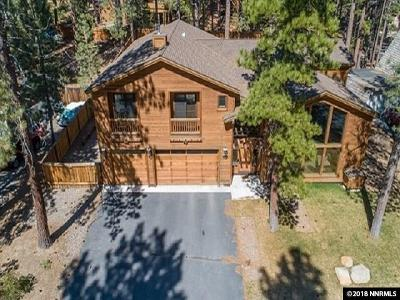 Washoe County Single Family Home New: 1076 Mill Creek Road