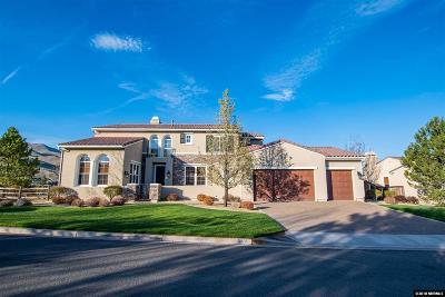 Washoe County Single Family Home New: 8435 Castlehawk Ct