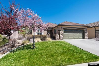 Reno Single Family Home For Sale: 9171 Mount Pleasant