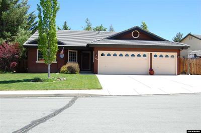 Sparks Single Family Home For Sale: 4402 Desert Hills