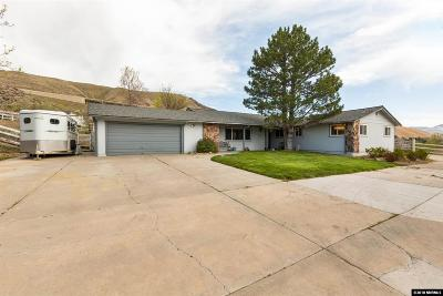 Washoe County Single Family Home For Sale: 20875 Ames Lane