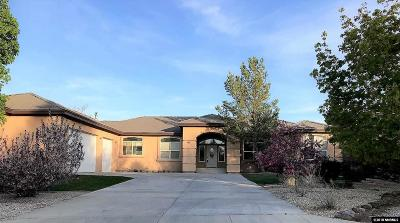 Washoe County Single Family Home For Sale: 1520 Star Way