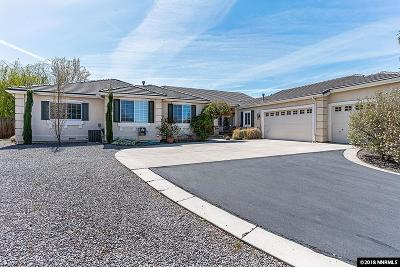 Washoe County Single Family Home For Sale: 1140 Flanders Road