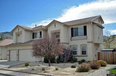 Reno Single Family Home For Sale: 263 River Flow Drive
