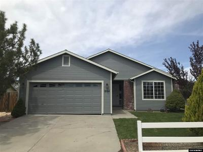 Carson City Single Family Home For Sale: 984 Ridgeview Drive