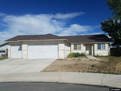 Fernley Single Family Home For Sale: 407 Wasatch