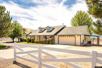 Gardnerville Single Family Home For Sale: 720 Mustang Ln