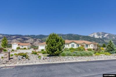 Washoe County Single Family Home For Sale: 18035 Lake Vista