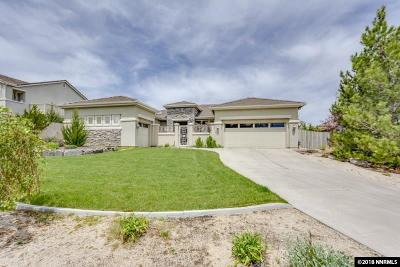 Washoe County Single Family Home For Sale: 2711 Sun Chaser Ct