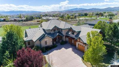 Washoe County Single Family Home For Sale: 7475 Silver King Drive