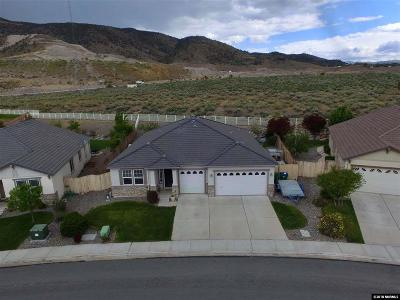 Reno Single Family Home New: 10772 Stone Hollow